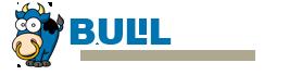 BULL Forms Texas